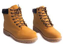 Мужские ботинки Biscuit
