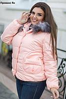 Зимняя женская куртка батал Прованс Ян