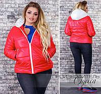 Женская весенняя куртка  больших размеров 44-54  с капюшоном / 4 цвета арт 4317-218