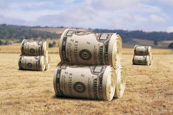 Озвучена стоимость гектара земли после отмены моратория