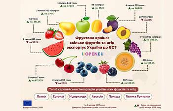 Какие страны закупают фрукты и ягоды в Украине