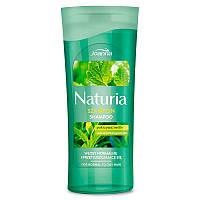Joanna Шампунь для нормальных и жирных волос с крапивой и зеленым чаем Naturia