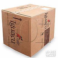 """Кофе растворимый сублимированный """"Iguacu"""" (Игуация, Бразилия), 25 кг"""
