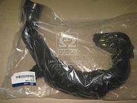 Воздухозаборник (пр-во Mobis) 282101E000, ACHZX
