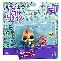 Набор 2 фигурки-зверюшки Rick Chikencluck и Sunny Chikencluck, Littlest Pet Shop, Hasbro