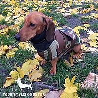 Одежда для собак, для такс, Попона Active Dog