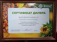 Всеукраинский научный институт селекции (ВНИС) повышает уровень защиты семян.