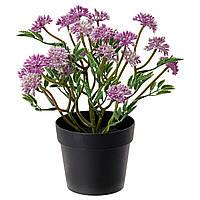 """ИКЕА """"ФЕЙКА"""" Искусственное растение в горшке, клевер, 21 см."""