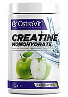 Креатин OstroVit Creatine Monohydrate 500 грам