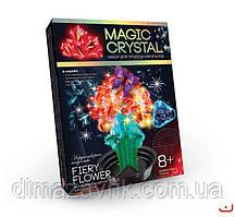 """Набор для проведения опытов """"MAGIC CRYSTAL"""" Danko Toys"""