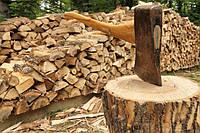 Продажа дубовых дров по Харькову и области