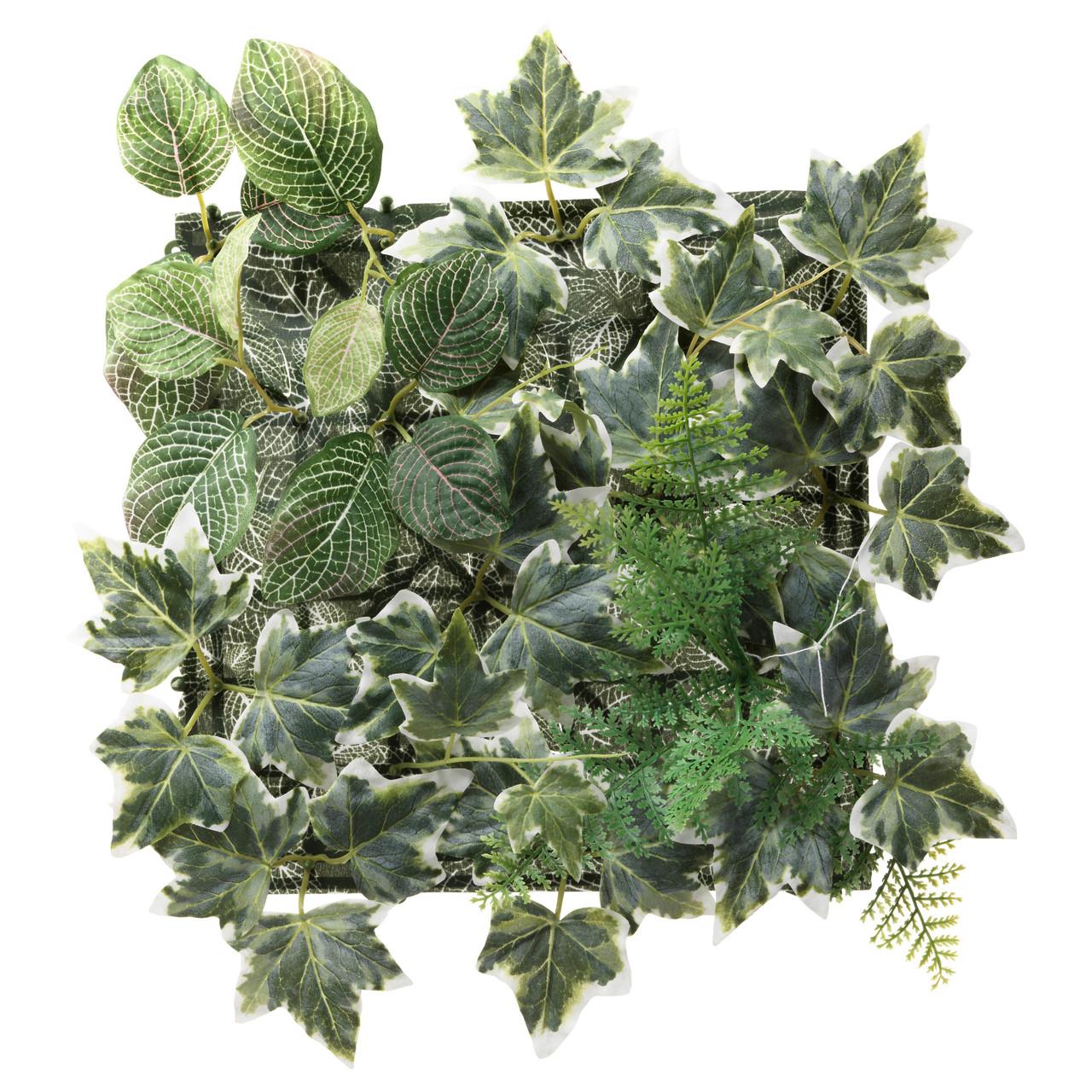 """ИКЕА """"ФЕЙКА"""" Растение искусственное, настенный, для дома и улицы, зеленый 26x26 см."""