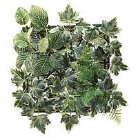 """ИКЕА """"ФЕЙКА"""" Растение искусственное, настенный, для дома и улицы, зеленый 26x26 см., фото 1"""
