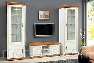 Пенал с витражем (Модульная система Freedom для гостиной)  Микс Мебель, фото 2