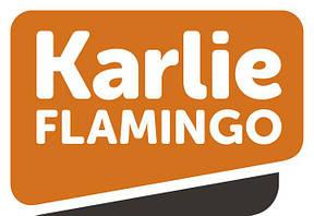 Іграшки Karlie-Flamingo для птахів