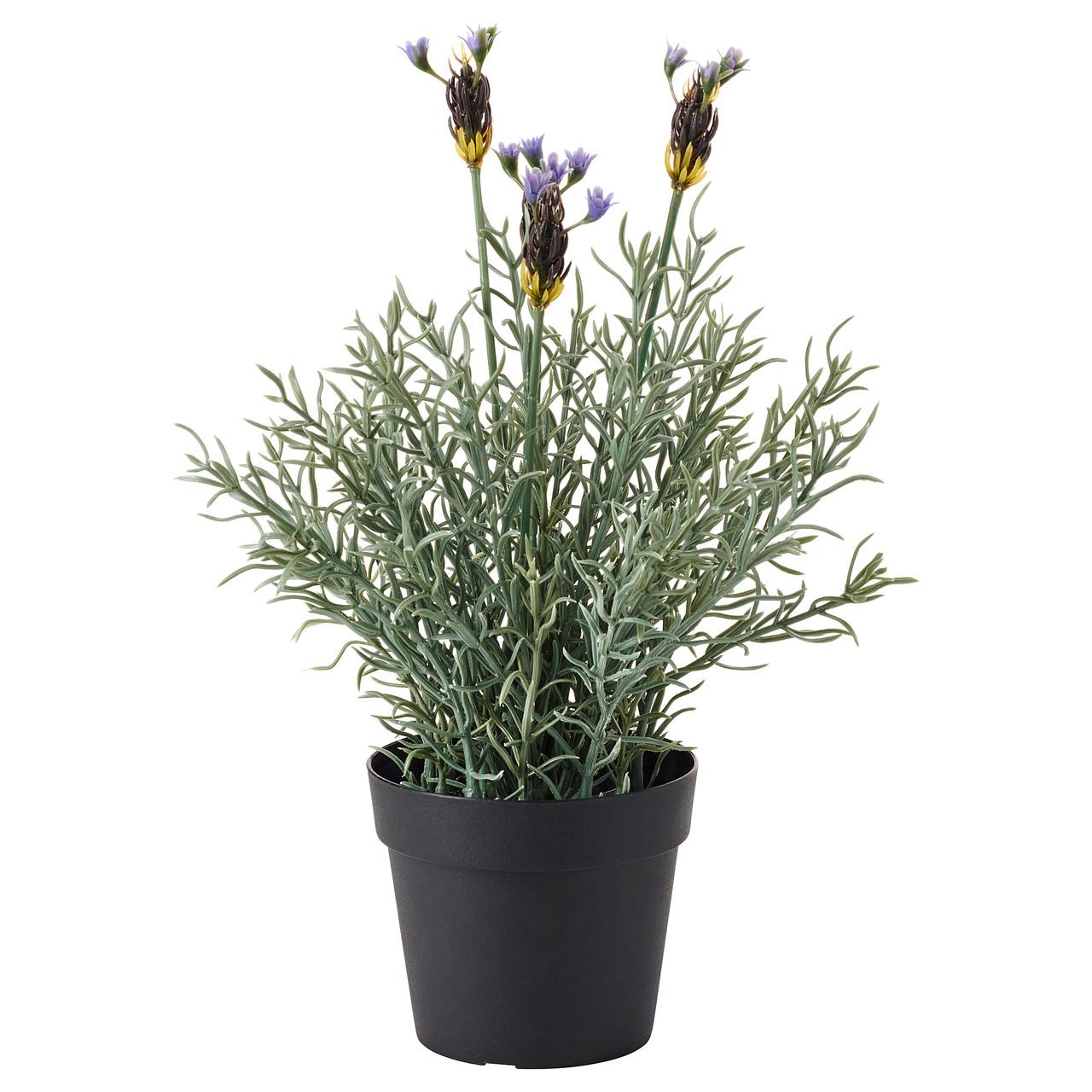 """ИКЕА """"ФЕЙКА"""" Искусственное растение в горшке, лаванда сиреневый, 27 см."""