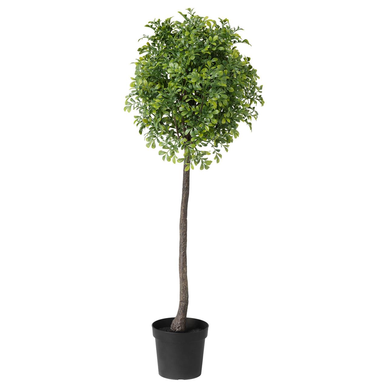 """ИКЕА """"ФЕЙКА"""" Искусственное растение в горшке, для дома и улицы, самшит стебель, 93 см."""