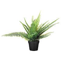 """ИКЕА """"ФЕЙКА"""" Искусственное растение в горшке, папоротник, 34 см."""