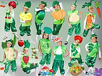 Карнавальный костюм Овощи и Фрукты Огород
