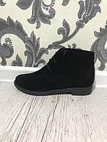 Ботинки, шнуровка,замш