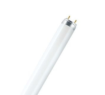 Лампа L 18 W / 880 SKYWHITE G13 OSRAM