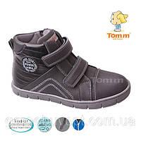 Ботинки деми- 35р-22.5 см Том.М