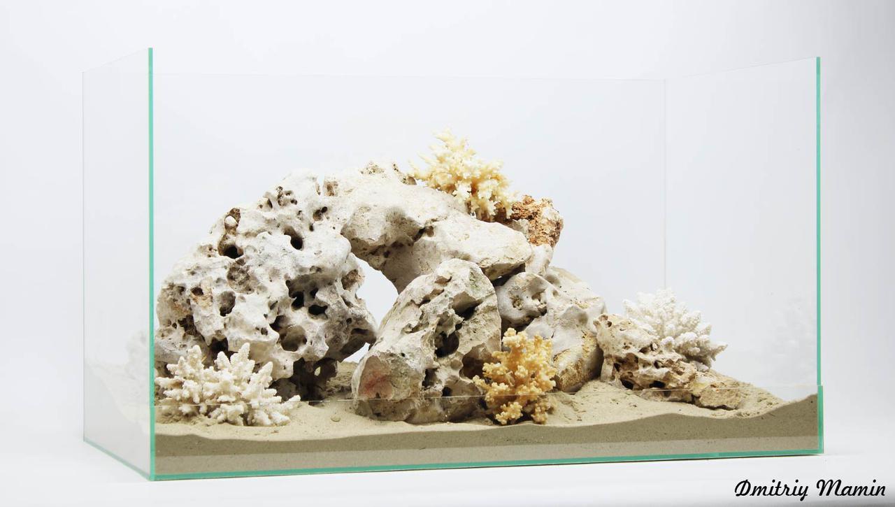 """Композиция """"Белый риф"""" с кораллами"""