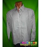 Рубашка мужская в полоску с длинным рукавом AMERICAN SWEETHEART