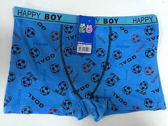Боксеры на 4-12 Happy Boy Микс, фото 2