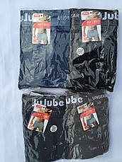 Трусы мужские JuJube XL-4XL, фото 3
