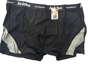 Трусы мужские JuJube XL-4XL, фото 2