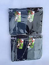 Трусы мужские батал 4XL-6XL JuJube, фото 3