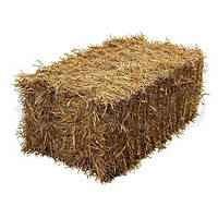 Солома в тюках пшеничная(1000х500х300)