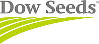 Семена подсолнечника 8H449CLDM