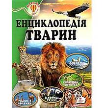 Всезнайко: Енциклопедія тварин П ( Ч )
