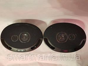 Автомобільна акустика Pioner SP-6942 овал