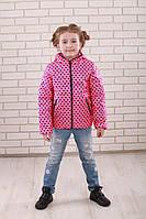 Красивая куртка для девочки на весну- осень Звезда