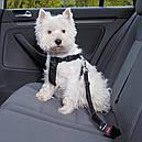 Автомобильный поводок Trixie для собак черный, фото 2