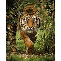 """Картина по номерам Животные, птицы """"Король джунглей"""" KHO4043"""