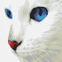 Схема для вышивки бисером Ангорская голубоглазая  , фото 1