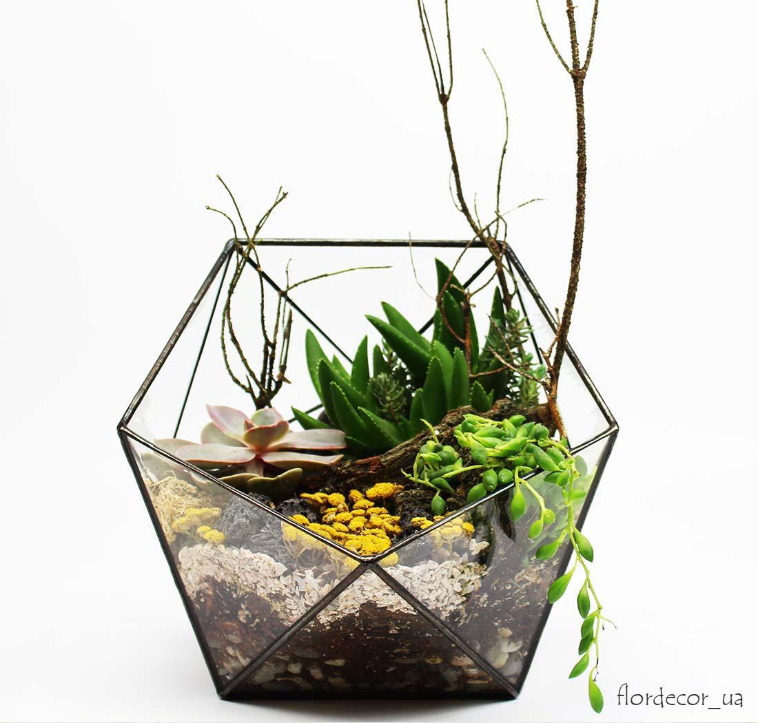 Флораріум: Basket maxi