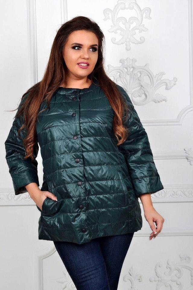 Куртка женская, модель 203 батал