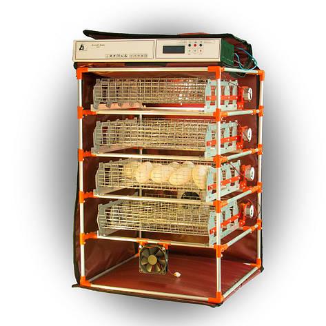Автоматичний інкубатор-конструктор Zoom Goose на 112 яєць водоплавних птахів, фото 2