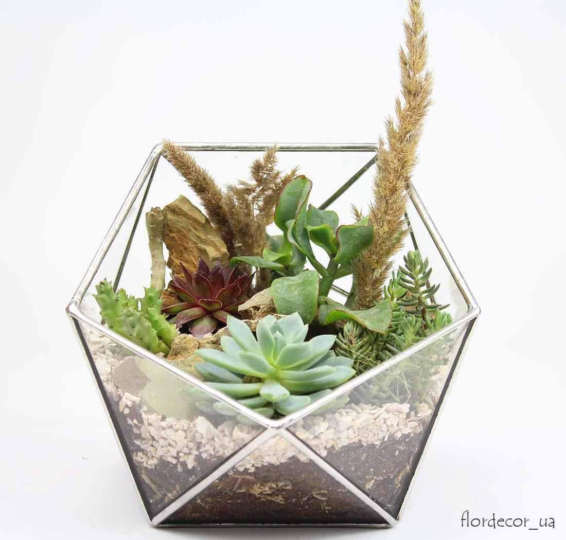 Флораріум Basket mini