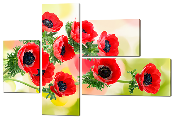 Модульная картина Маки красные акварель