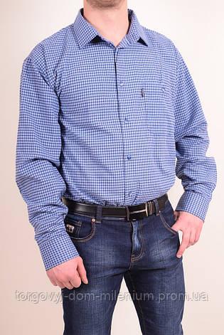 Рубашка мужская VERSANI SKY1794B Размер:47,48,49,50, фото 2