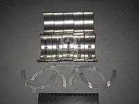 Вкладыши коренные Н1 Д 240 АО10-С2 (пр-во ЗПС, г.Тамбов)