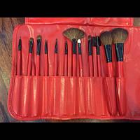 Подарочный набор кистей Shany для макияжа RED - 12pc