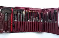 Подарочный набор кистей Shany для макияжа NY Collection Pro Brush Kit 22 Pc