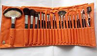 Подарочный набор кистей Shany для макияжа Orange Pouch - 22pc